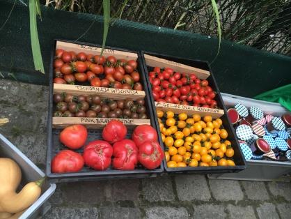 Tomaten bei La Vielle Poste