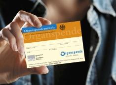 Organspendeausweis (BZGA.de)