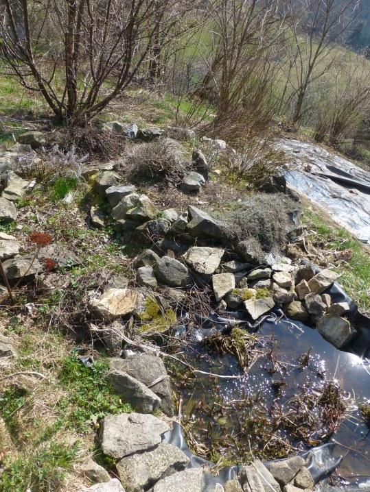 Kräuterspirale mit Teich