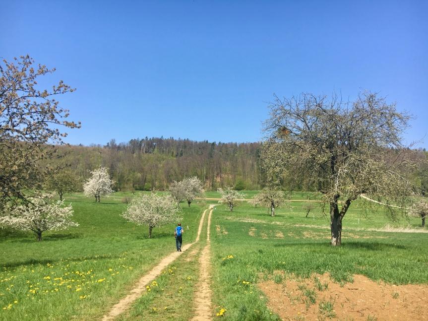 Wanderung im Baselbiet